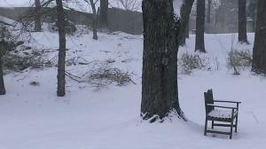 tuesday snow 1 21 14